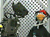 Puppet Penguin Hopper Operates a Camera at the Children's Channel